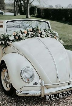 Beetle_car_decor.jpg - 21.83 kB
